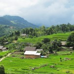 Ban Ha Village - Sapa Travel Guide