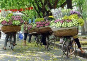 Full Day City Tour Hanoi