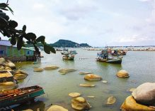 A trip to Hon Tre Island