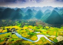 Bac Son valley in ripe rice season